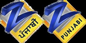 Zee Punjabi 2009