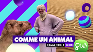 Comme-un-animal-alex-goude-gulli-11-01-18