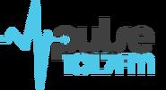 Pulse-1017-mast-logo