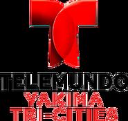 Telemundo Tri-cities 2017