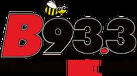 B93.3 WLDB