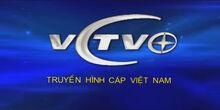VCTV Truyền hình Cáp Việt Nam logo