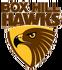 Box Hill Football Club