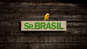 Sr.brasil2010
