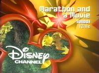 DisneyLeaves2003