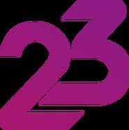 23 Years Indosiar Purple