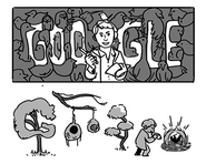 Google Phoebe Snetsinger's 85th birthday (Storyboards)