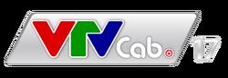 VTVCab 17