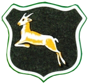 Springboks 1906-36