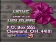 WEWS Home For The Holidays