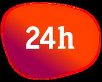 24h bug