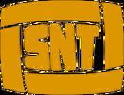 Logo SNT 1990