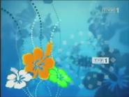 TVP1 2004-2010 (23)