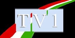 TV1 (1989-1991)