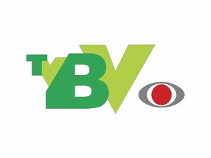 TVBV1996