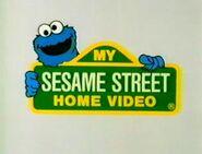 300px-Mysesamestreethomevideologo