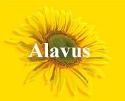 Alavus 2006
