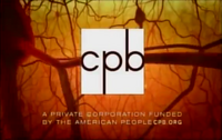 Corporation For Public Broadcasting 2001 (The Secret Life of the Brain)