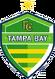 FC Tampa Bay logo