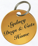 Syddogcathome logopre2016