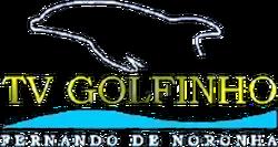 TV Golfinho 1998