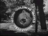 Metro-Goldwyn-Mayer Television 1958