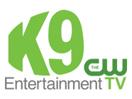 KNIN 2009