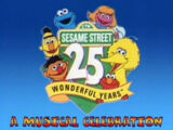 Sesame Street 25 Wonderful Years: A Musical Celebration