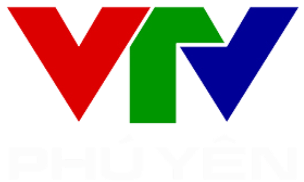 VTV PY 2011 logo