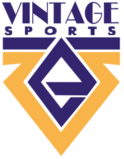 Vintage Sports logo 1993 1996