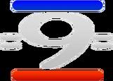800px-Canal 9 Paraná (Logo 1993)