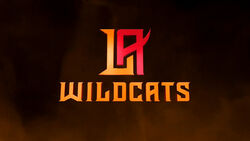 Los Angeles Wildcats-orangeBG