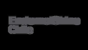2 line EndemolShine Chile logotype rgb cg11