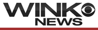 Wink new logo