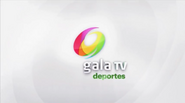 Canal 9 MX (2013) Deportes