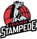 9704 idaho stampede-primary-2015