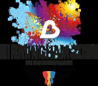 Birmingham2022 interim