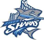 RiversharksBaseball