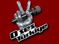 O-ses-türkiye-logo