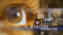 PBSDigitalPresentation3