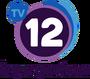 TV12 (Honduras)