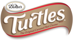 Turtles (2017)