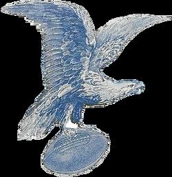 2524 philadelphia eagles-primary-1933