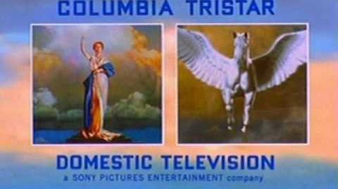 Columbia TriStar Domestic Television logo (2001-C)
