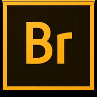 Adobe Bridge (2013-presente)