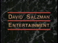 DavisSalzmanEntertainmentLogo