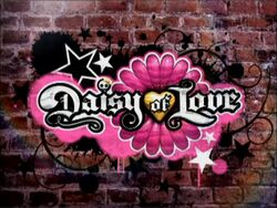 Daisy of Love