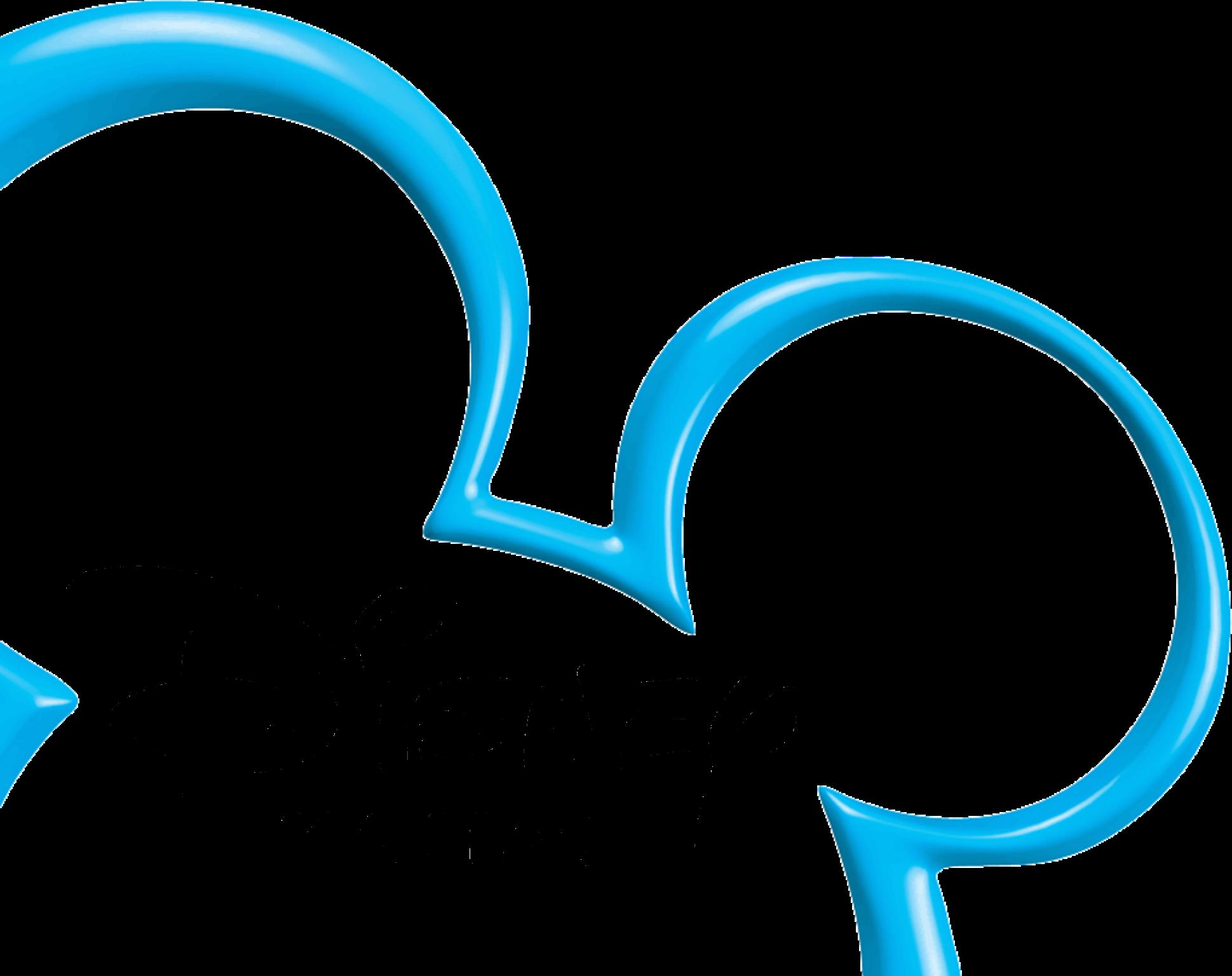 Disney Channel Russia logo 2011-2014