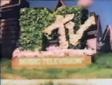 Mtvdinosaur1985