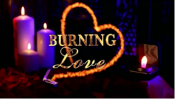 Burning Love S2